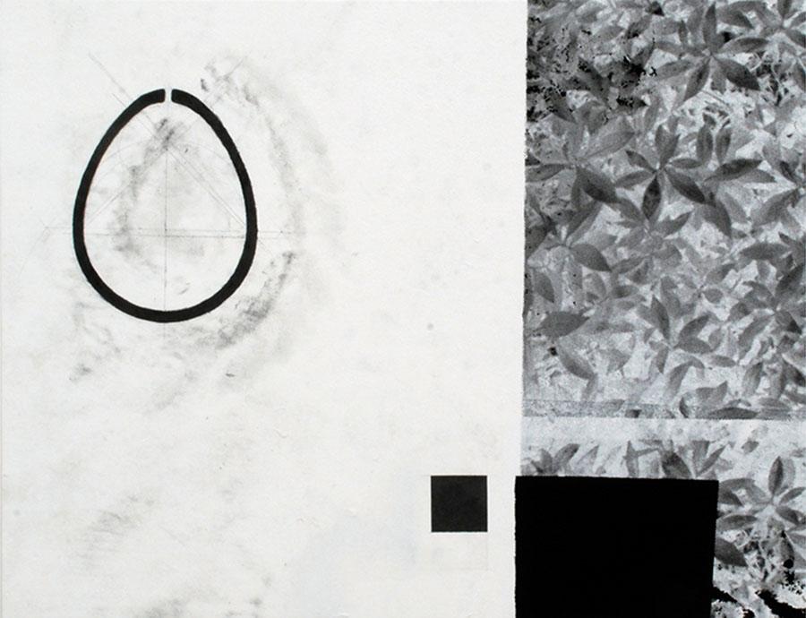 Plants Black Oval, 2013