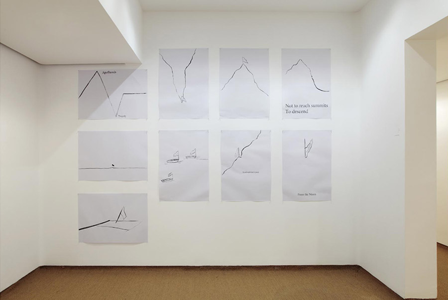 Conquest drawings, 2013
