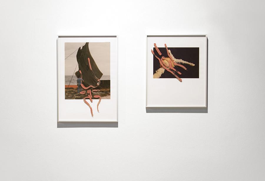 Fragments of Columbia: knee, 2017