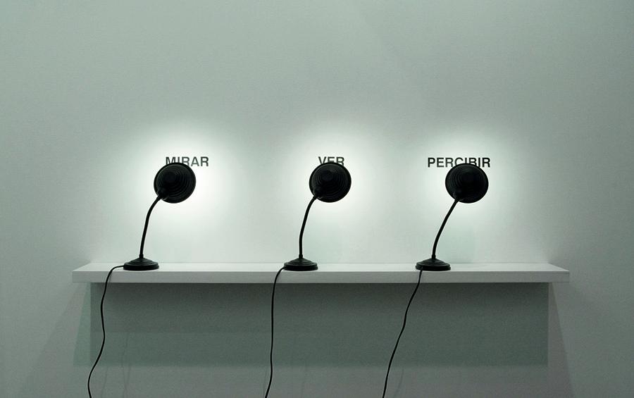 Mirar, ver, percibir, 2009