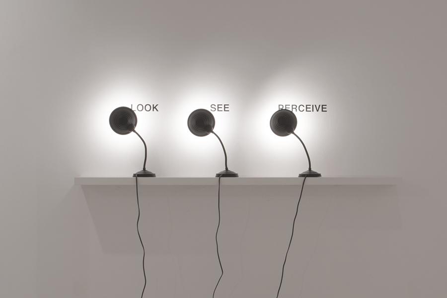 Look See Perceive, 2009