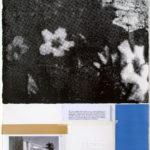 68 Flowers Blue, 2011