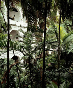 Santuario San Pedro Claver VI,