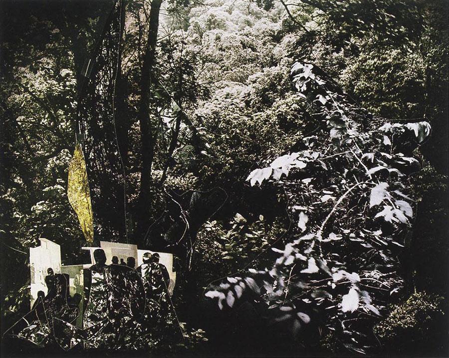 Catanguera, 2009