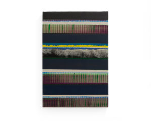 Pleno viento (Bernia), 2019