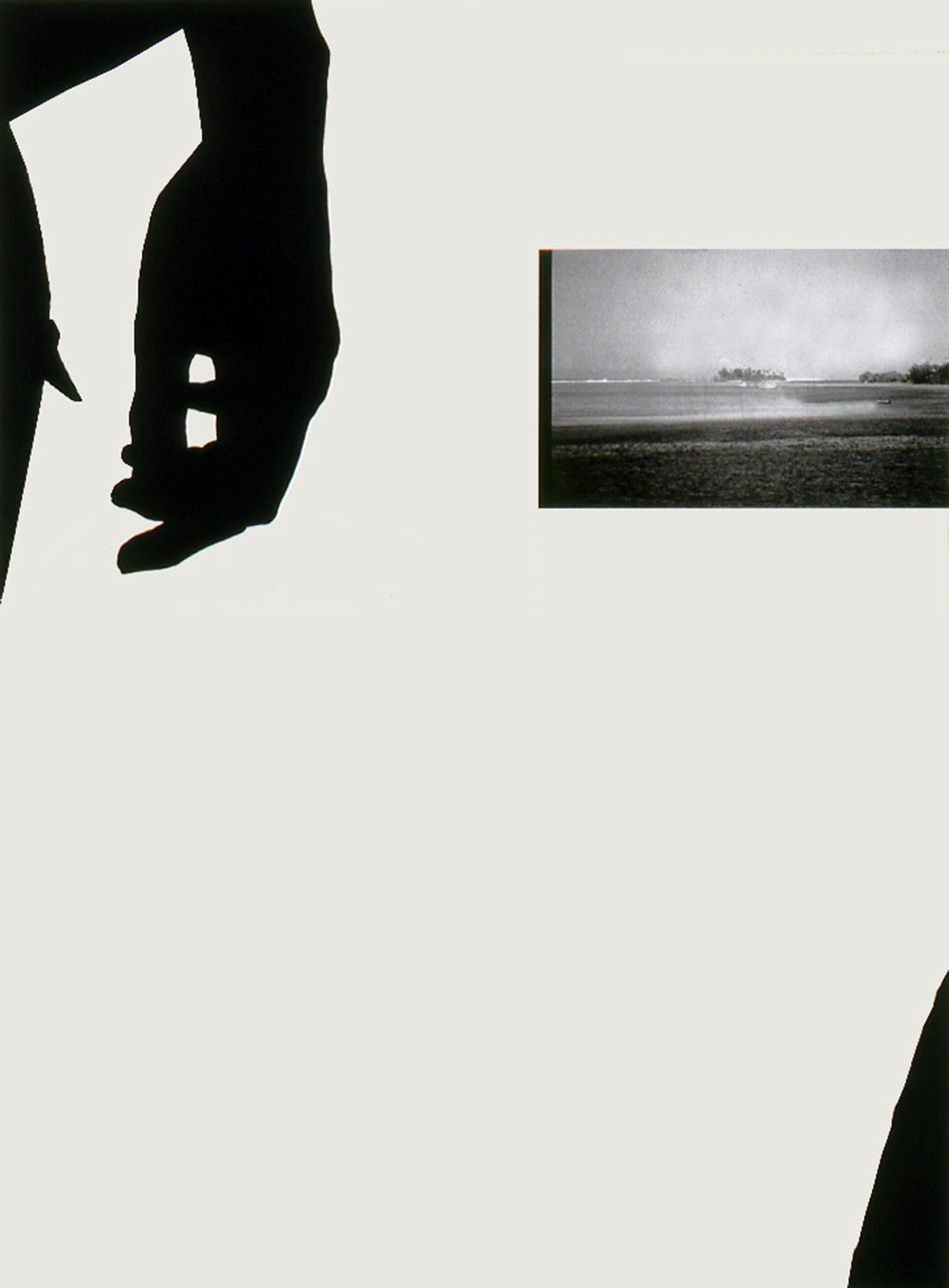 Domestic Isolation, 2002