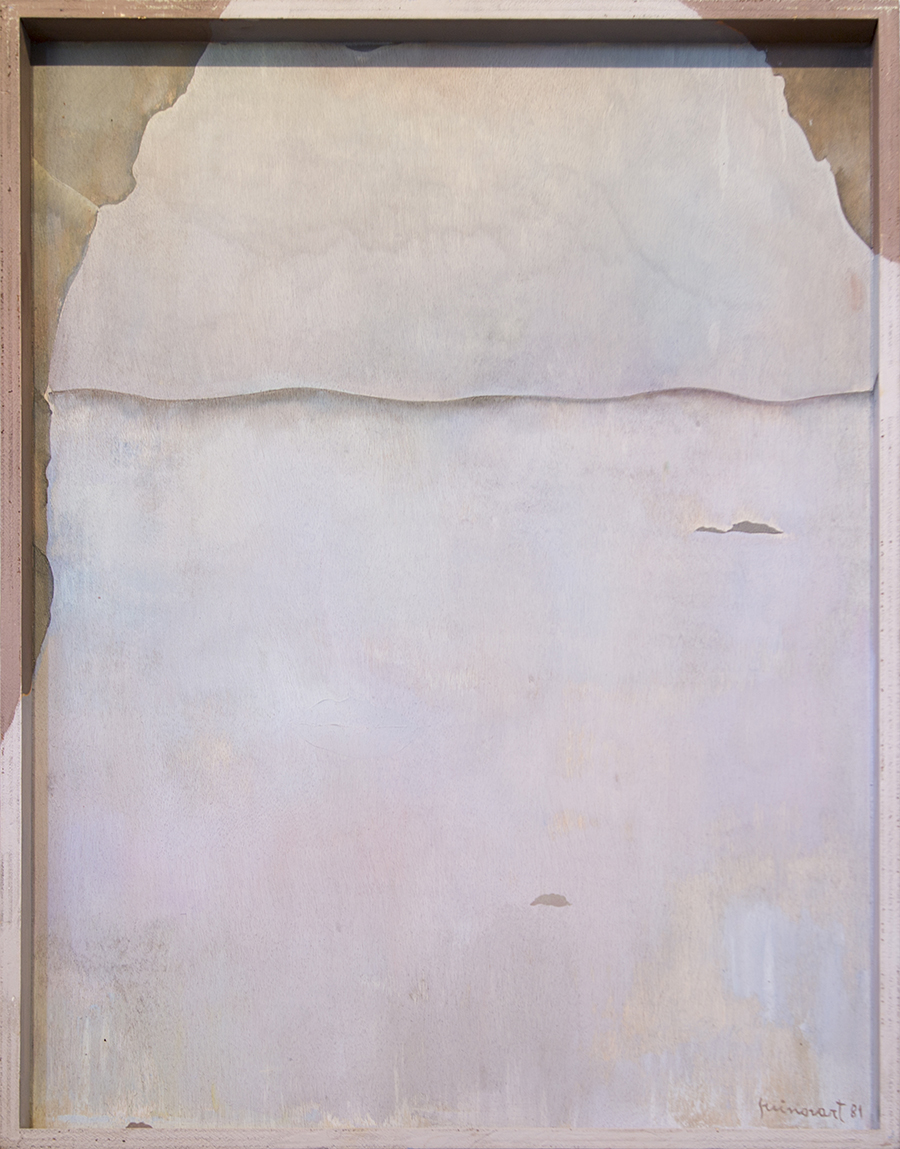 La pell mar, 1981