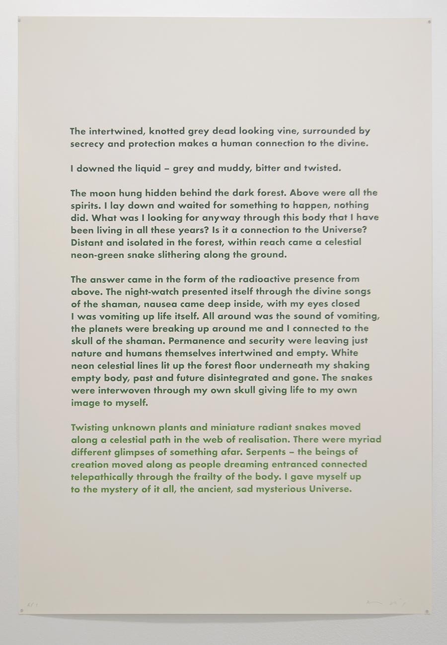 Forest (conversation 2), 2013-15