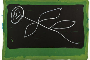 flor-sobre-negre-i-verd