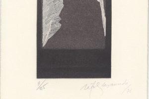 rafols-casamadas-finestre-amb-arbres