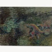 2020-marcel-rubio-algues-6x8cm