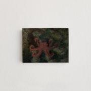 2020-marcel-rubio-la-fauna-marina-de-ripollet-es-riquissima-6x8cm-marge